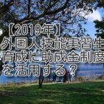 【2019年】外国人技能実習生育成に助成金制度を活用する?